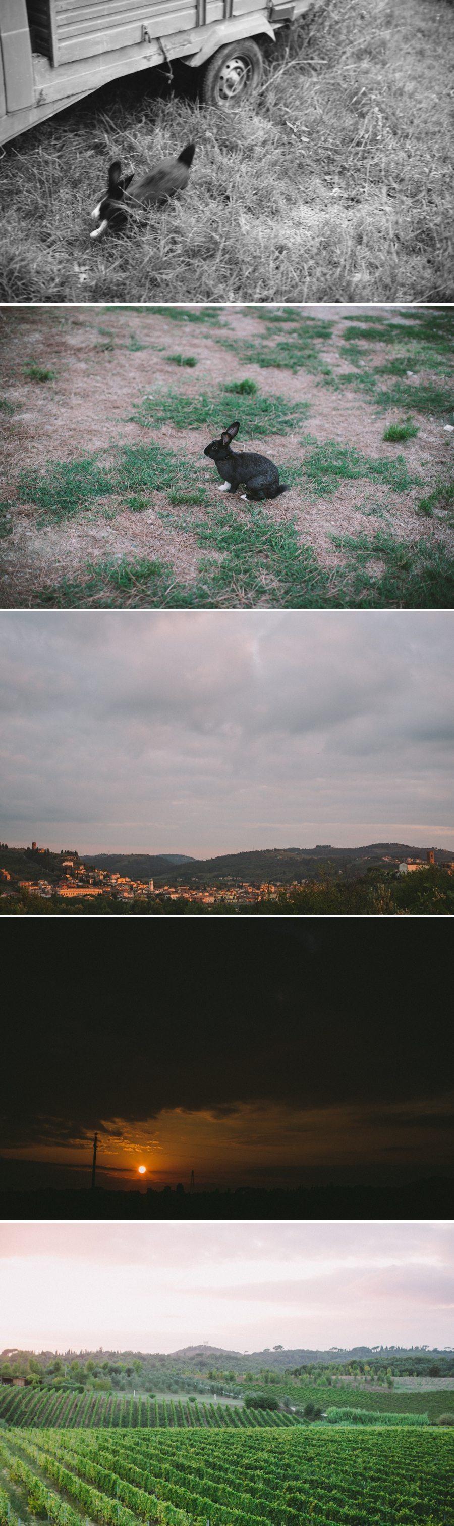 2013-11-11_0070